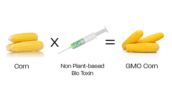 GMO Plants and Seeds