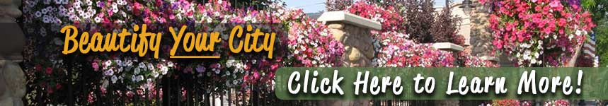 Beautify your city with Bloom Master Baskets and Planters