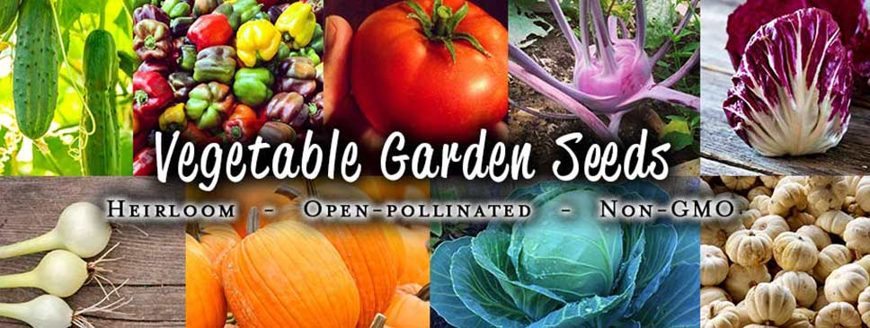 Vegetable Garden Seeds - Non-GMO