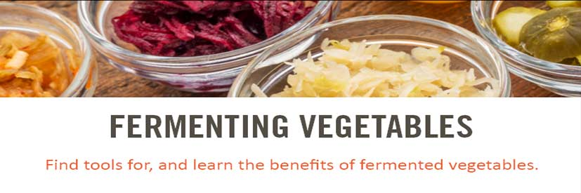 fermenting vegetables/sauerkraut starter guide