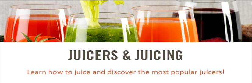 juicing/juicers starter guide
