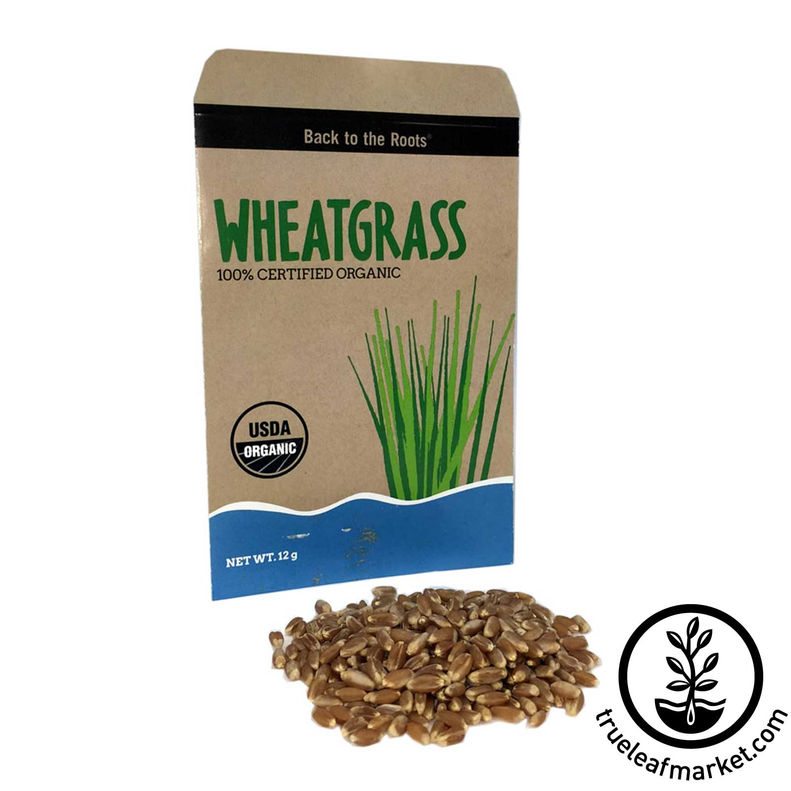 Aquafarm Wheatgrass Refill Packet