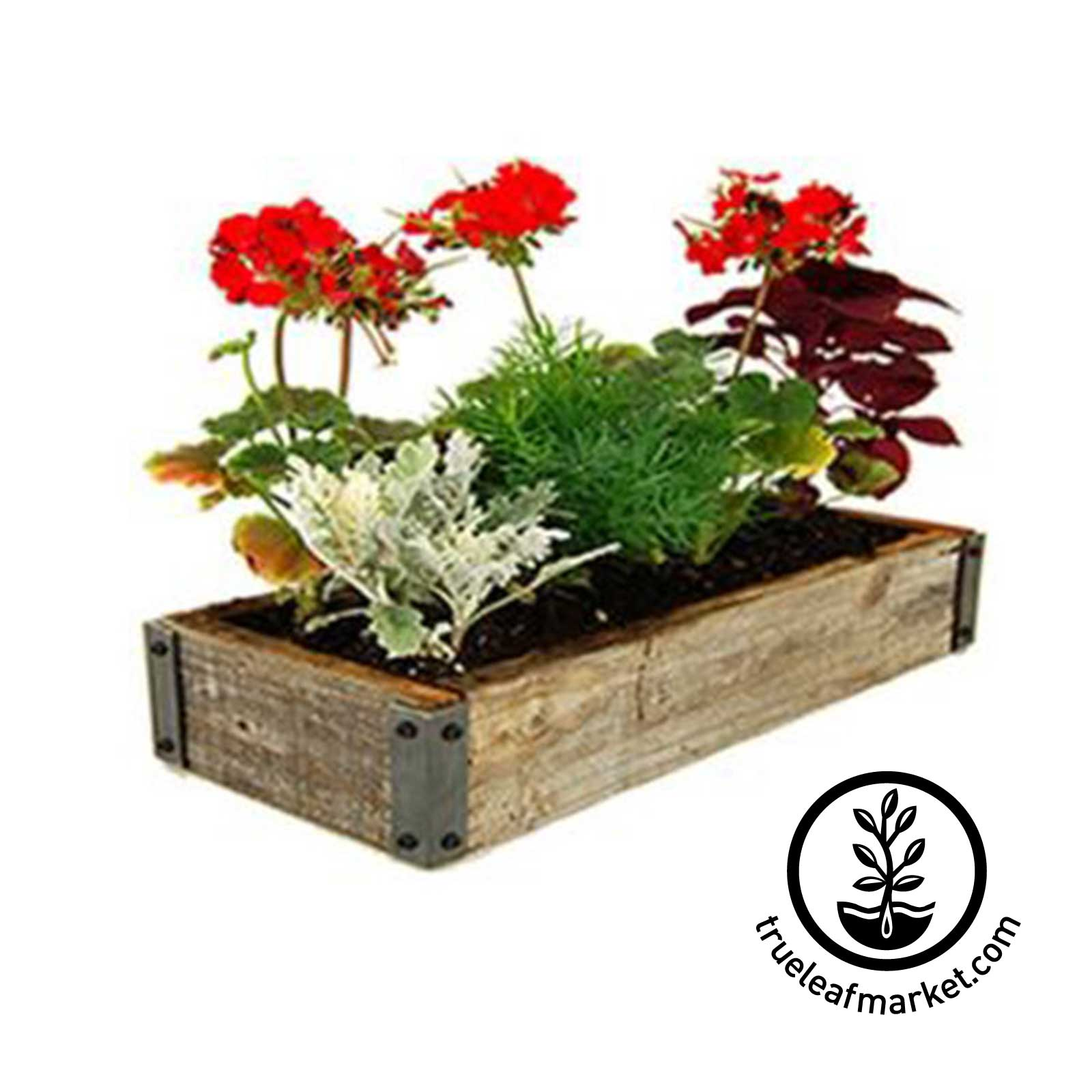 Barnwood Planter Flower Garden Kit Reclaimed barn wood, rustic barnwood, flowers