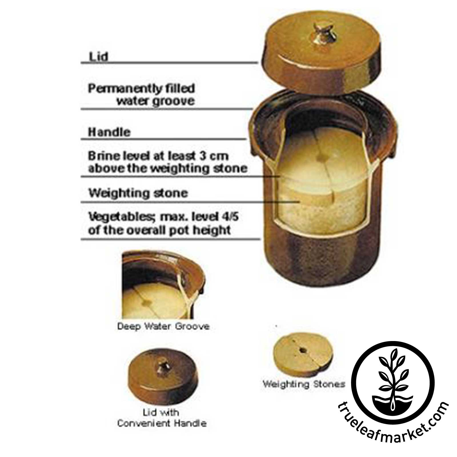Fermentation Crock - Cutaway View