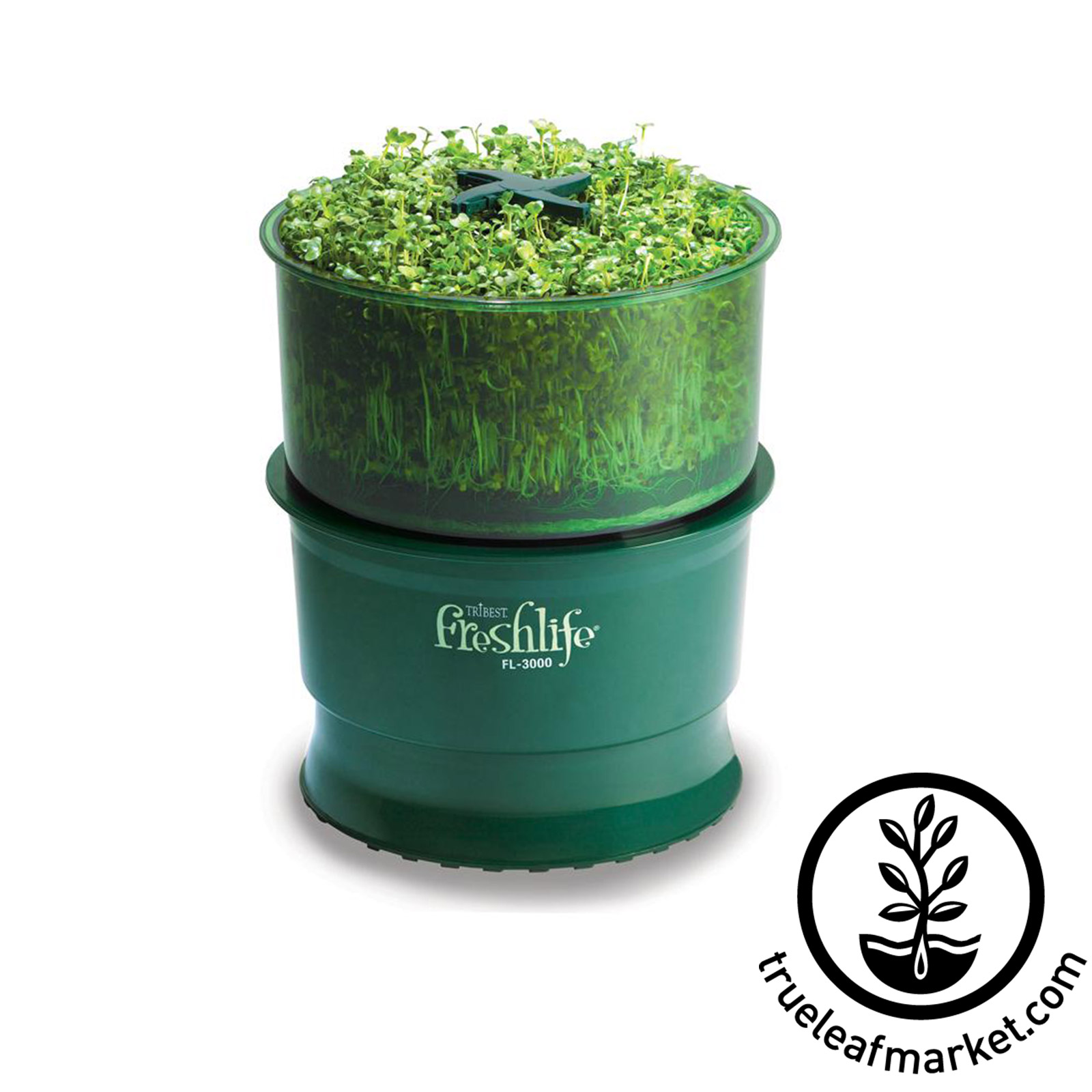 Freshlife Seed Sprouter by Tribest