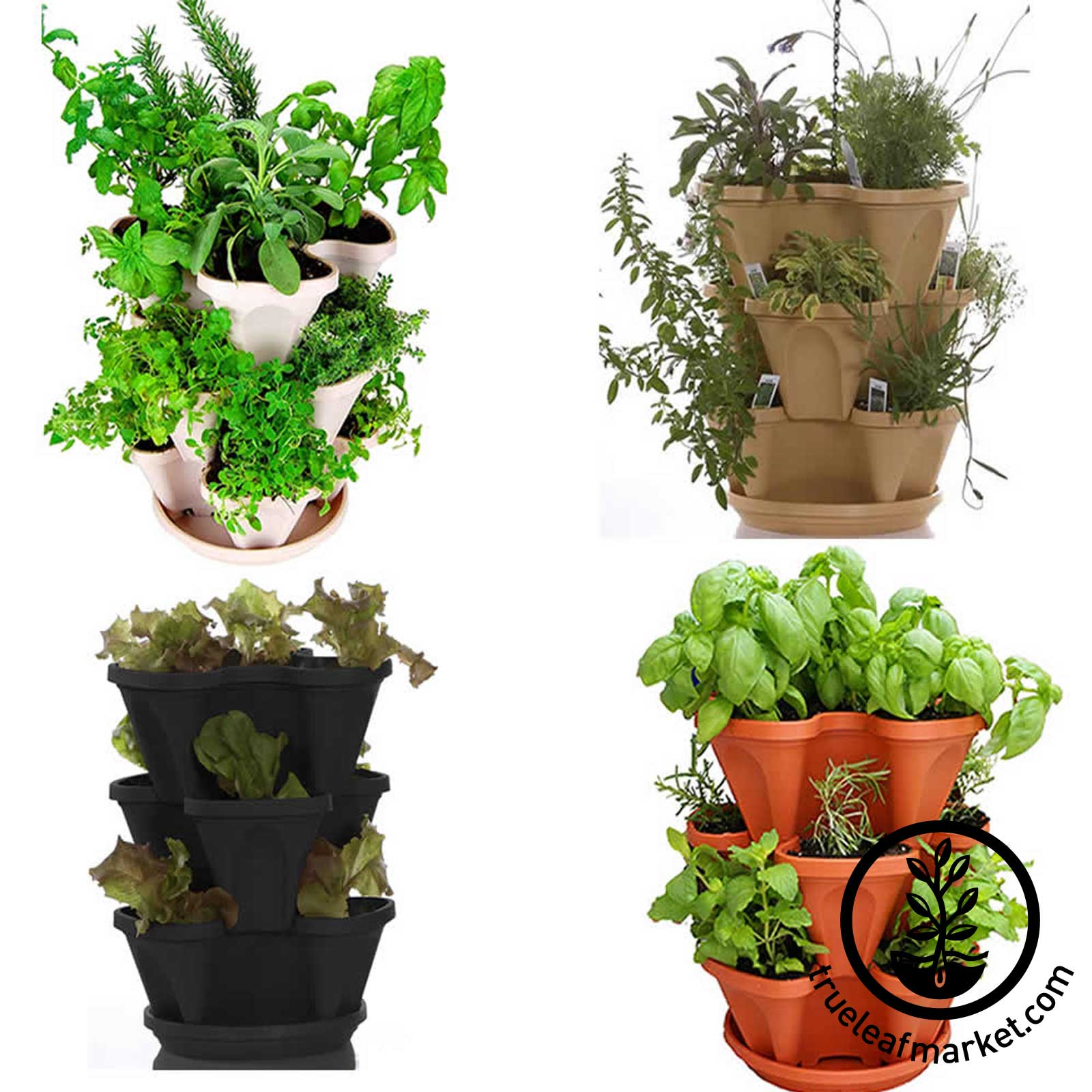 Garden Stacker + The Indoor Culinary Herb Garden