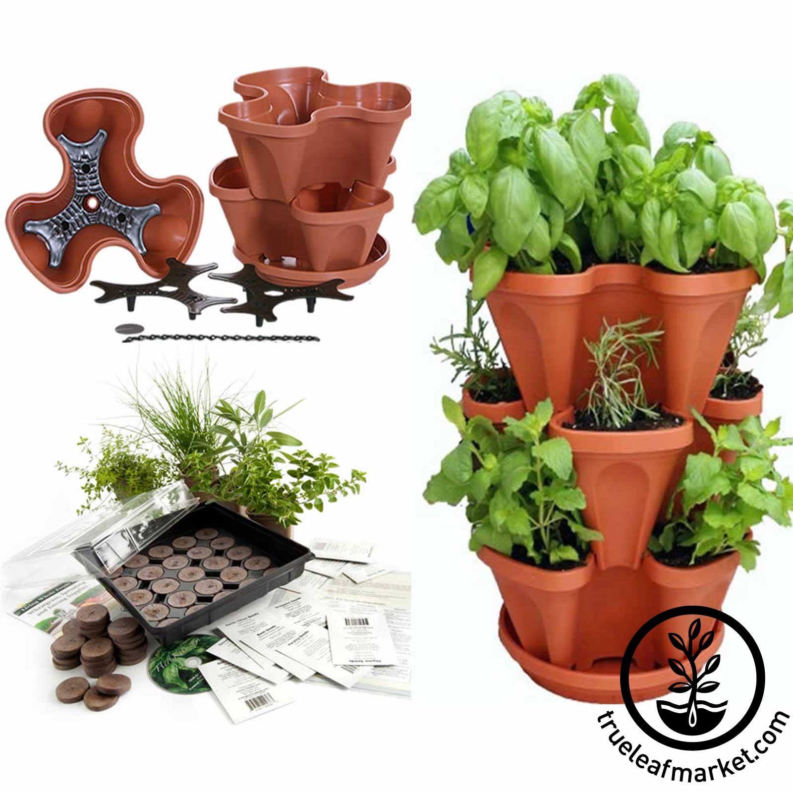 Terra Cotta Stacker with Culinary Herb Kit