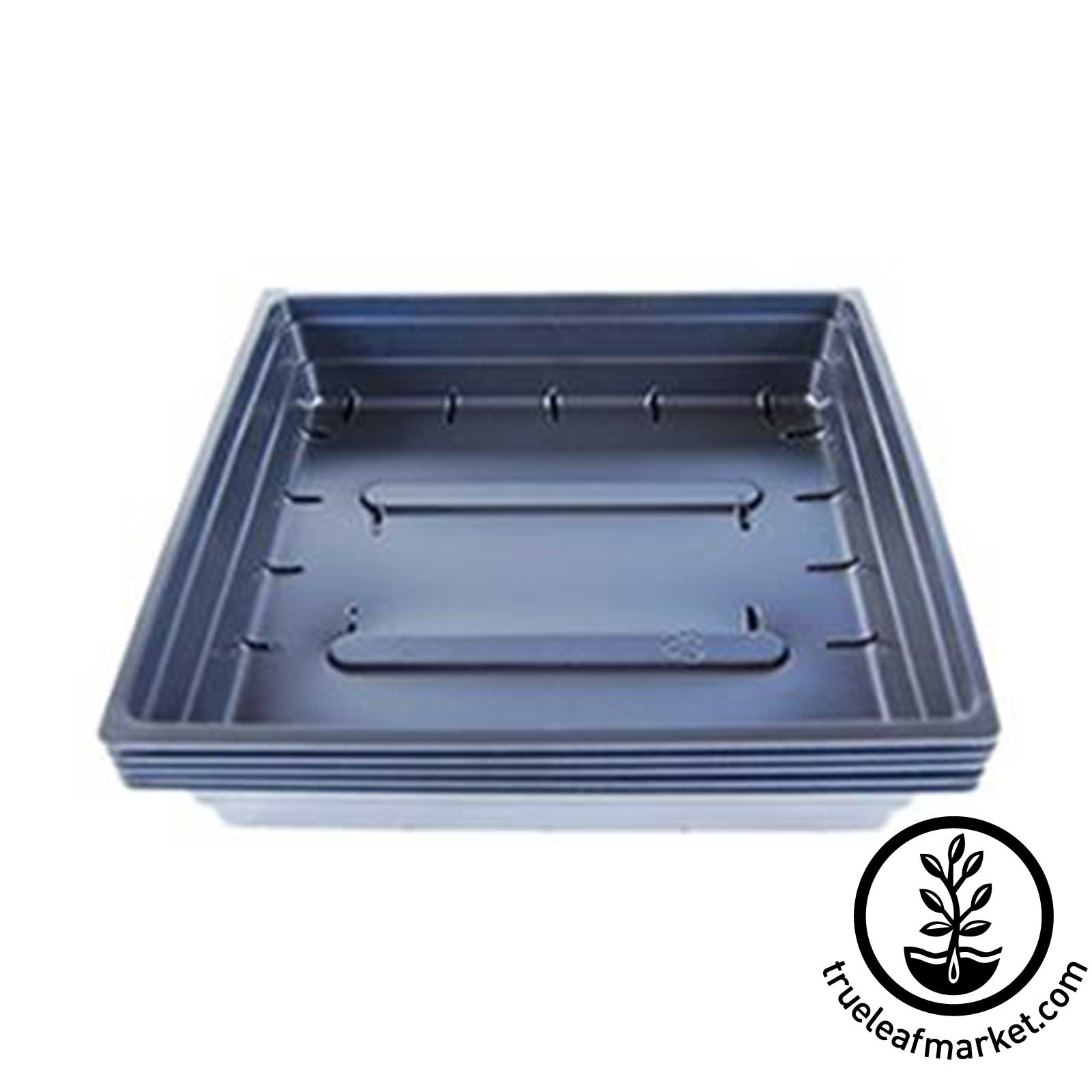 "10""x10"" Growing Trays WITH Drain Holes"
