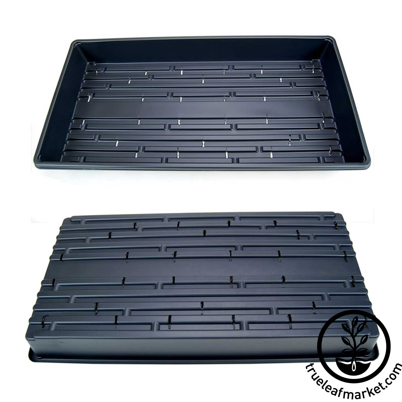Plant Propagation Trays WITH Drain Slits - Top & Bottom View