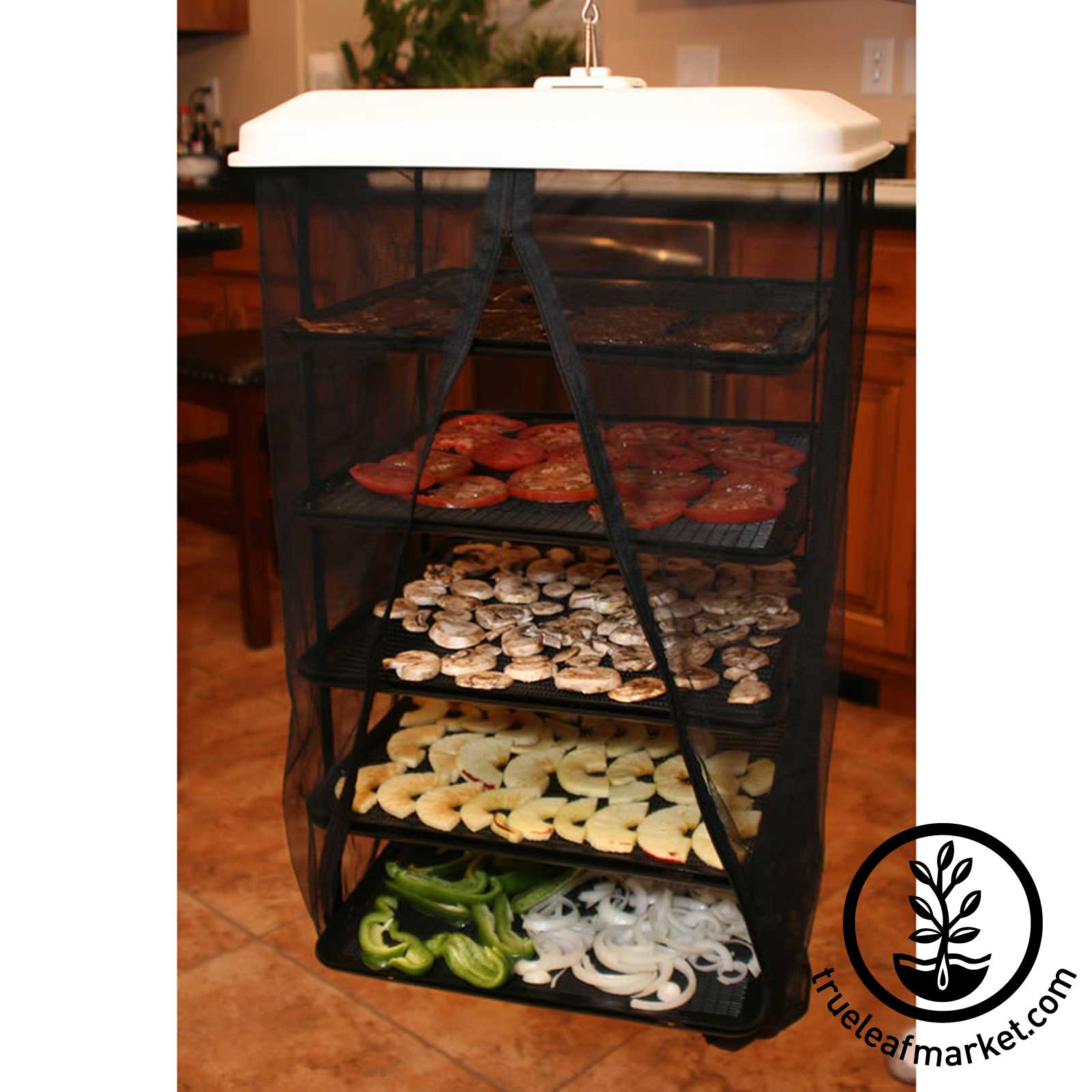 Solar Dehydrator: Yes, you can even use it to grow wheatgrass hydropnically!Great for Fruit and Vegetable Drying at Home