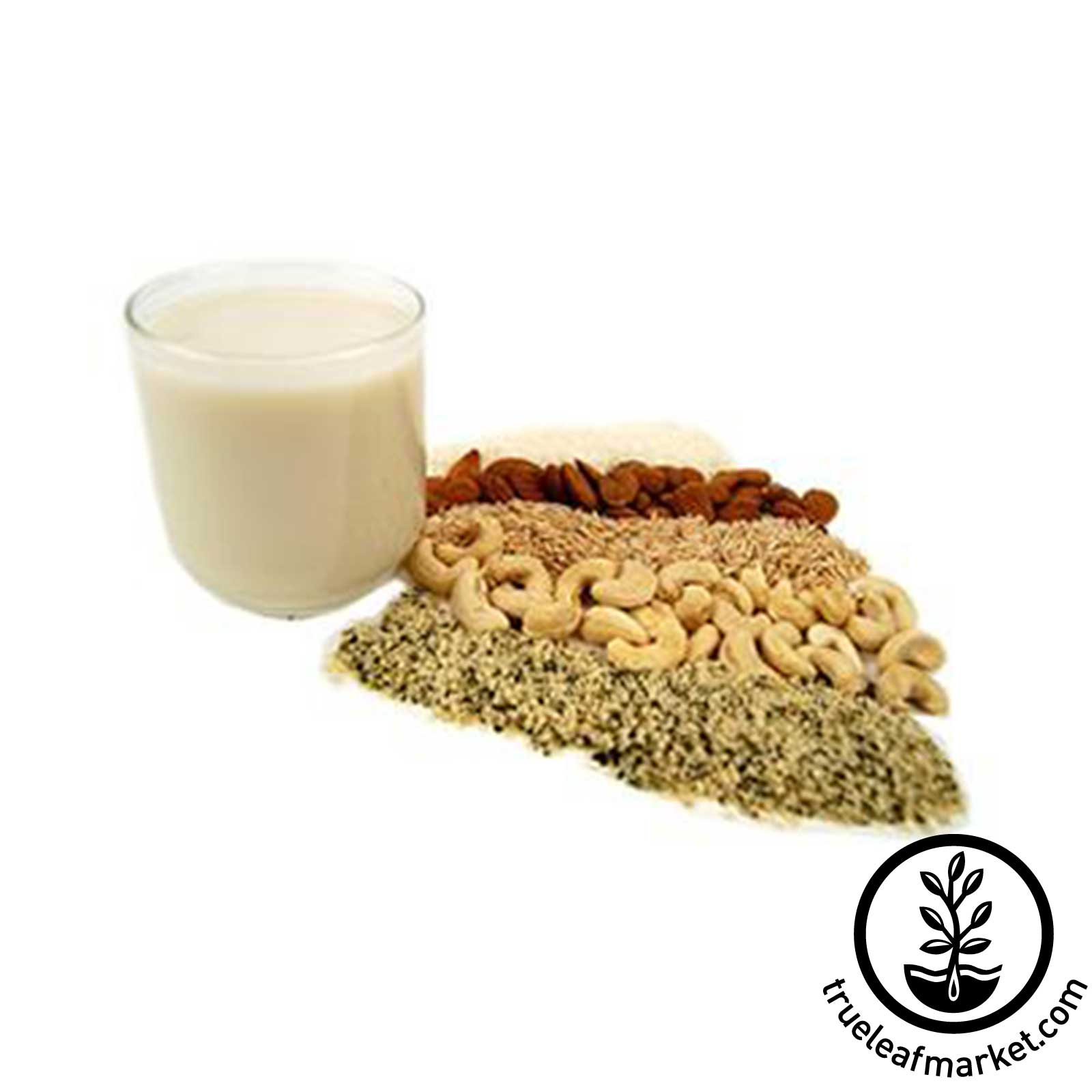 Organic Nut Milk Kit