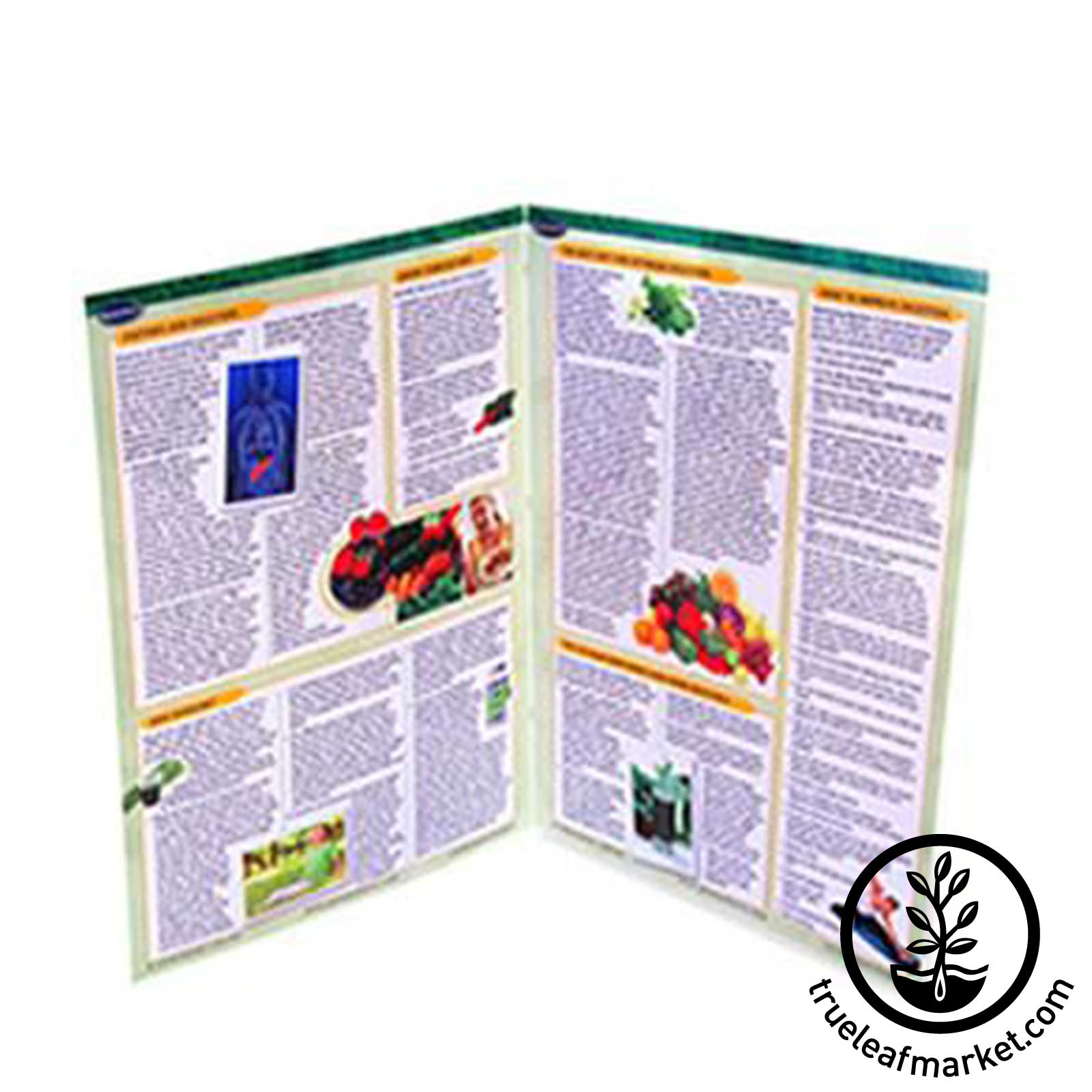 Permachart Raw Food Reference: Interior View
