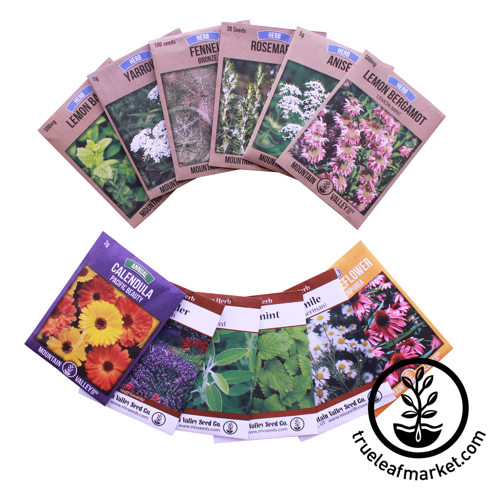 Herbal Tea Herb Seed Assortment