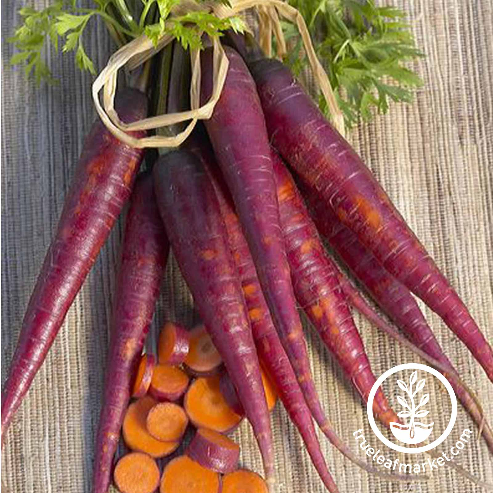 Carrot Purple Carrot Vegetable Seeds