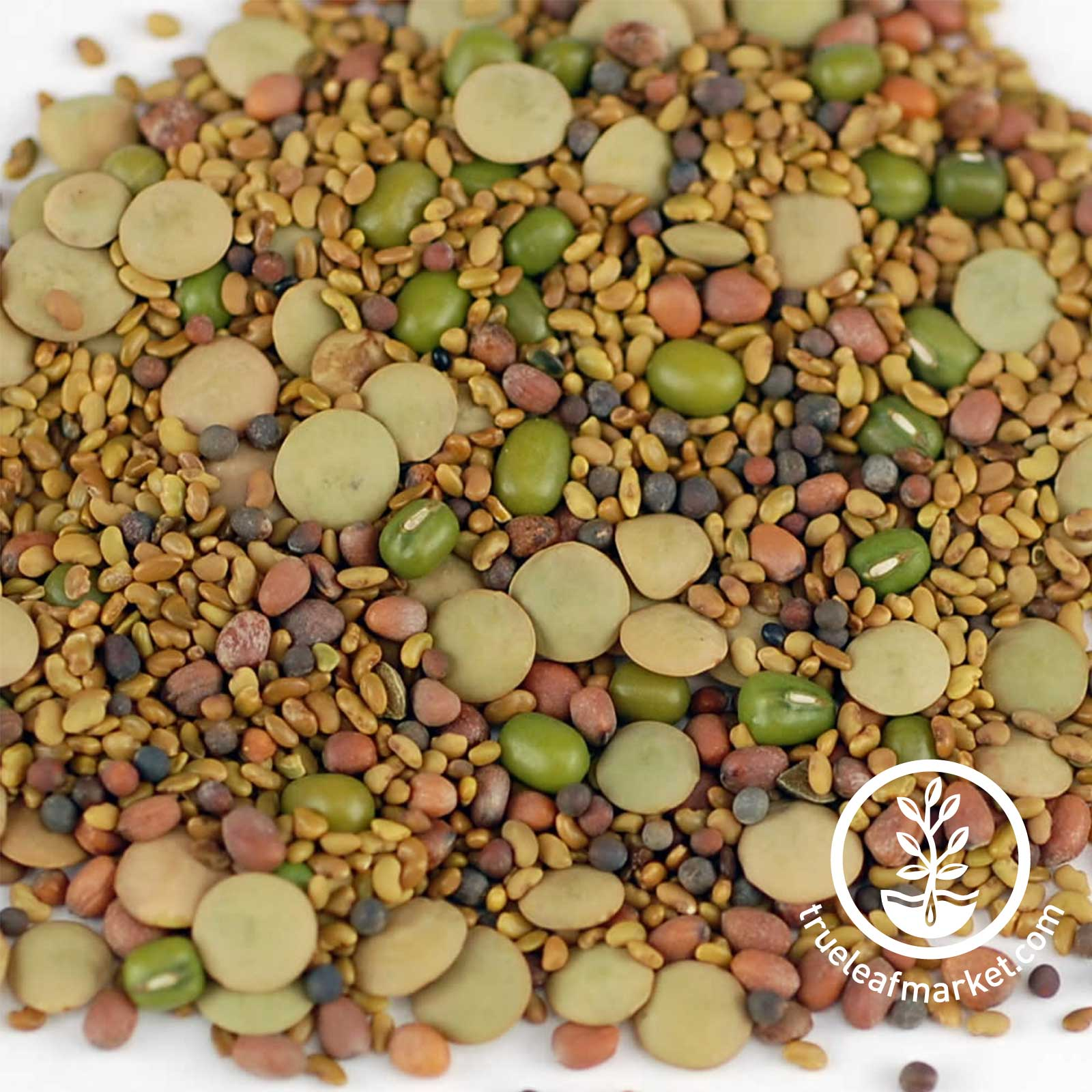 5 Part Salad Seed Mix: Organic