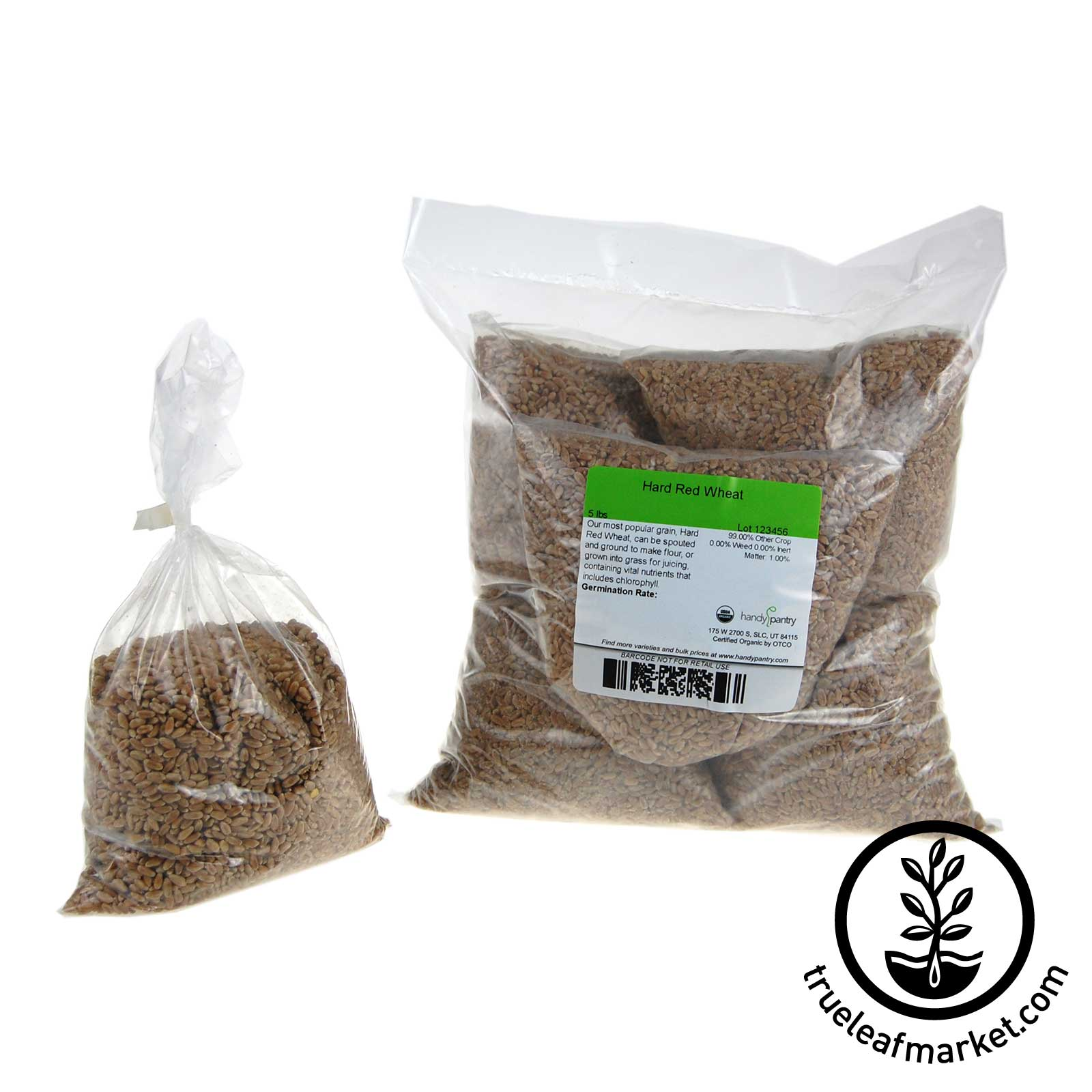 5 - One LB Bags - Hard Red Pre-Measured Wheat Grass Seed Refills