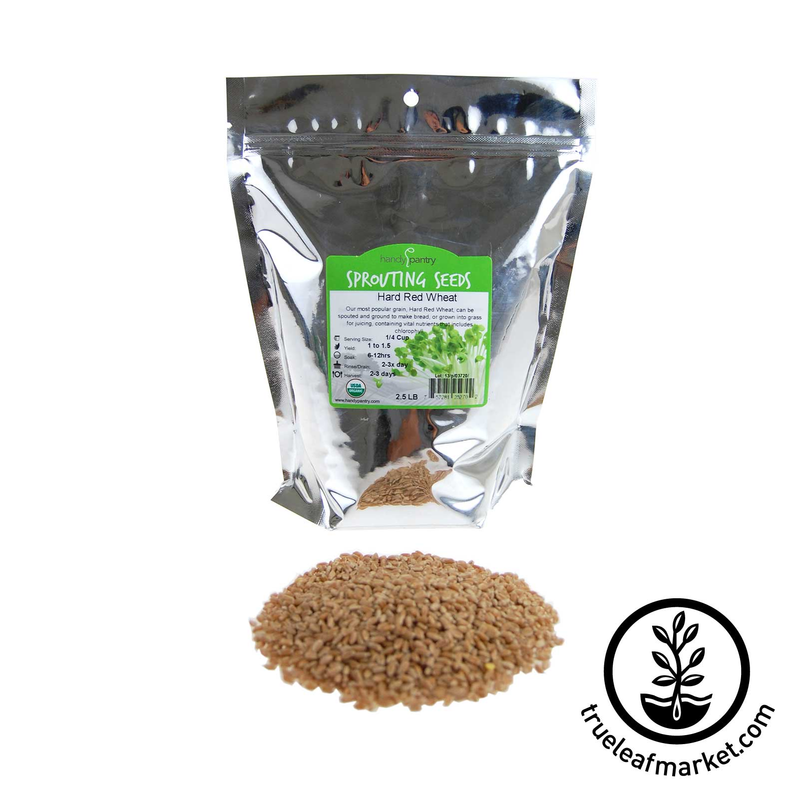 2.5 LB  - Hard Red Wheat Seeds