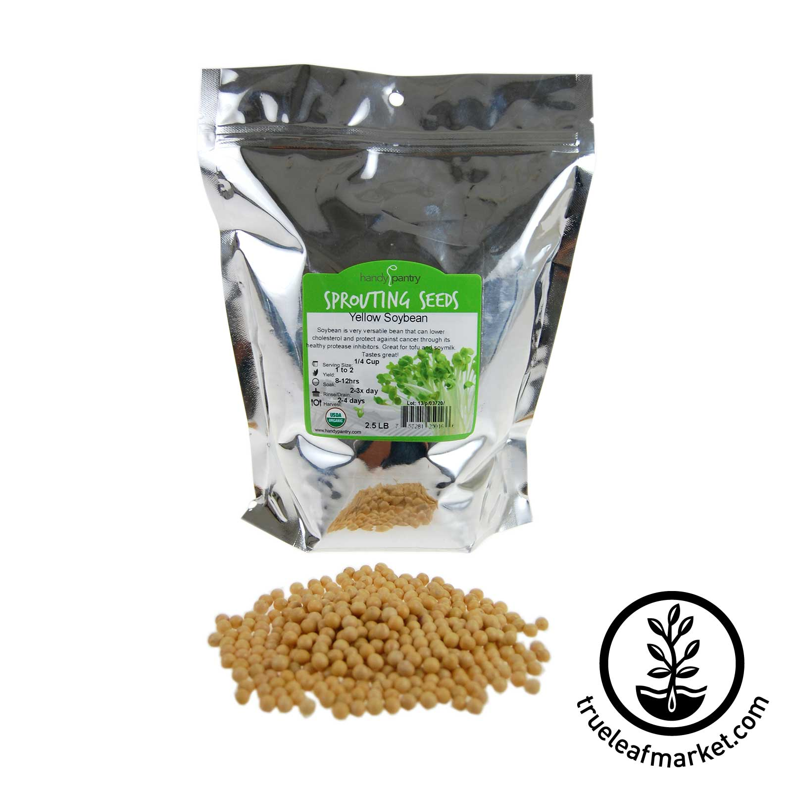2.5 LB Bag - Organic Yellow Soybeans
