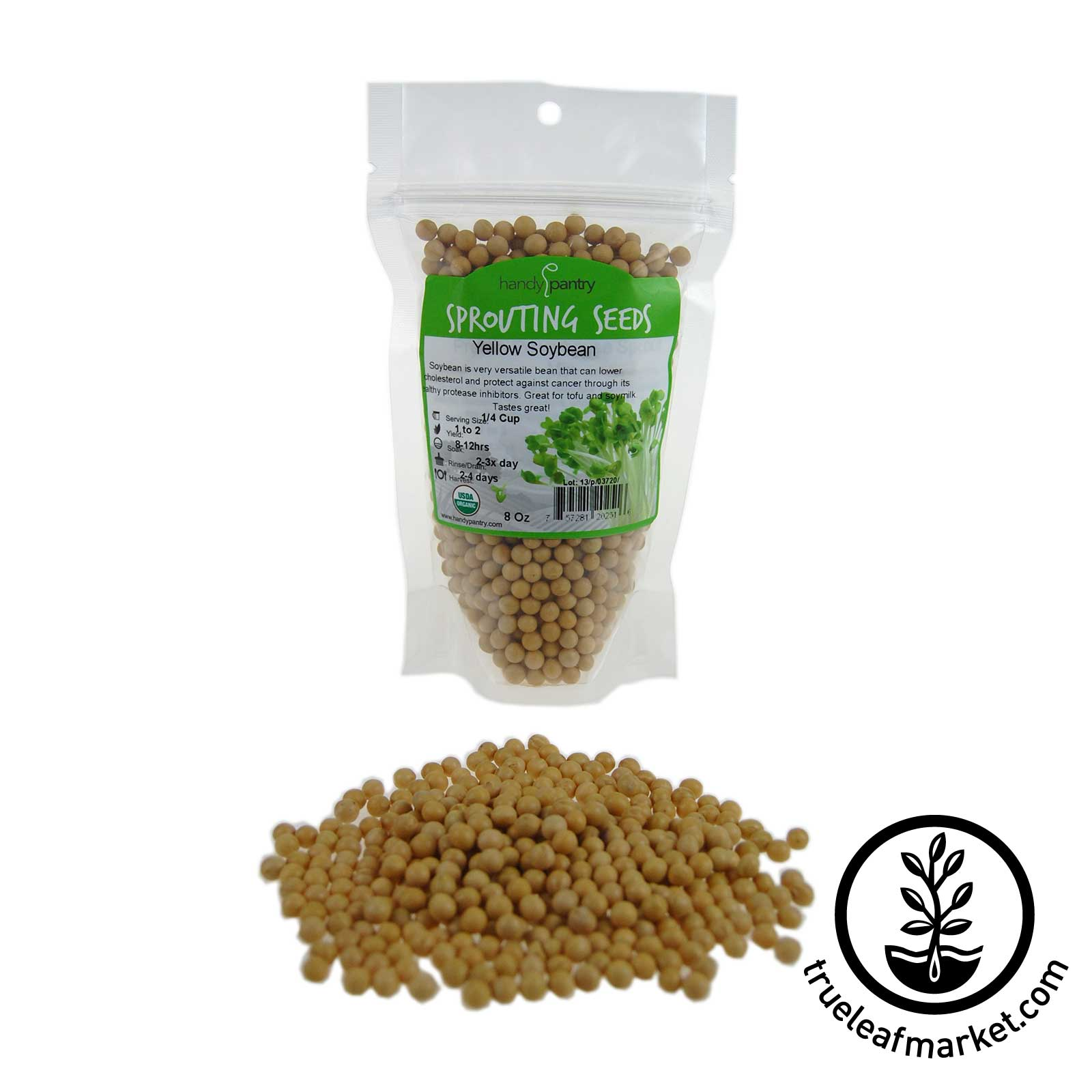 8 oz - Organic Yellow Soybeans