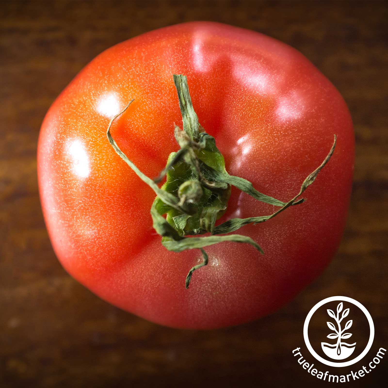 Tomato Brandywine Pink Seed
