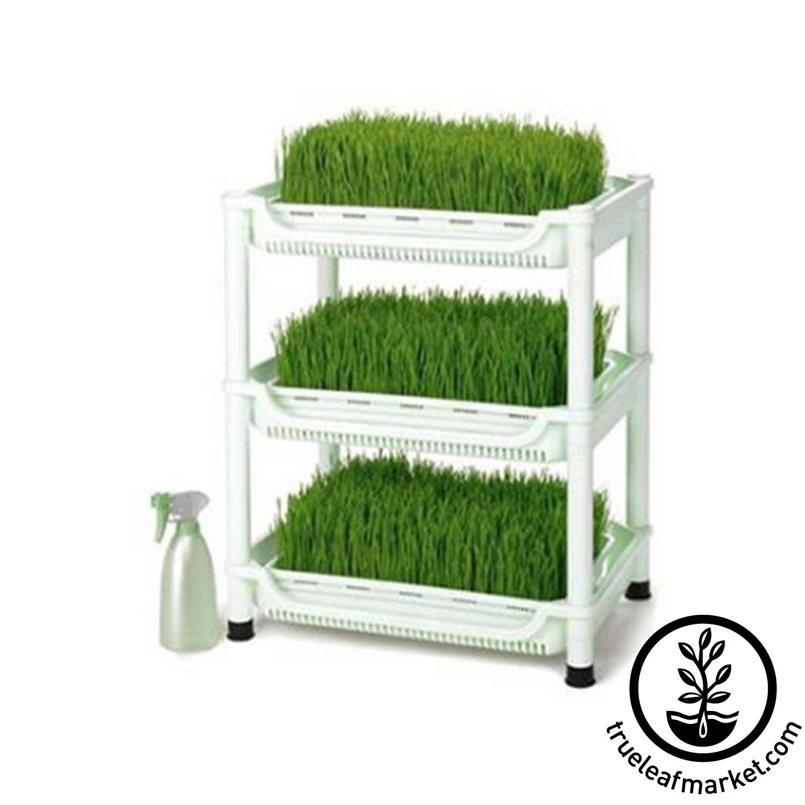 Sproutman SM-350 Wheatgrass Grower