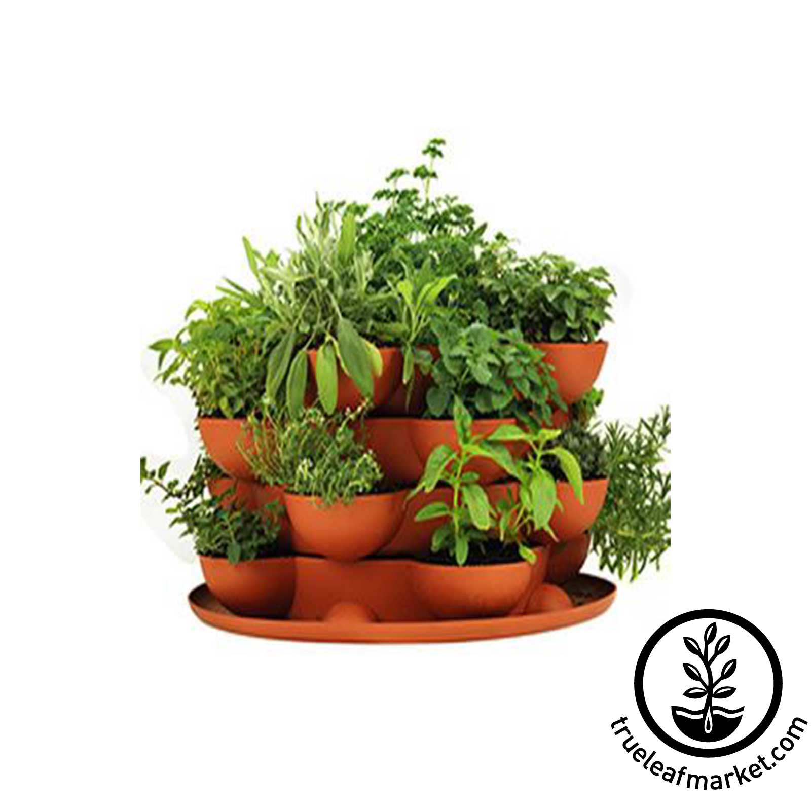 Stack & Grow Planter Plus Culinary Herb Kit