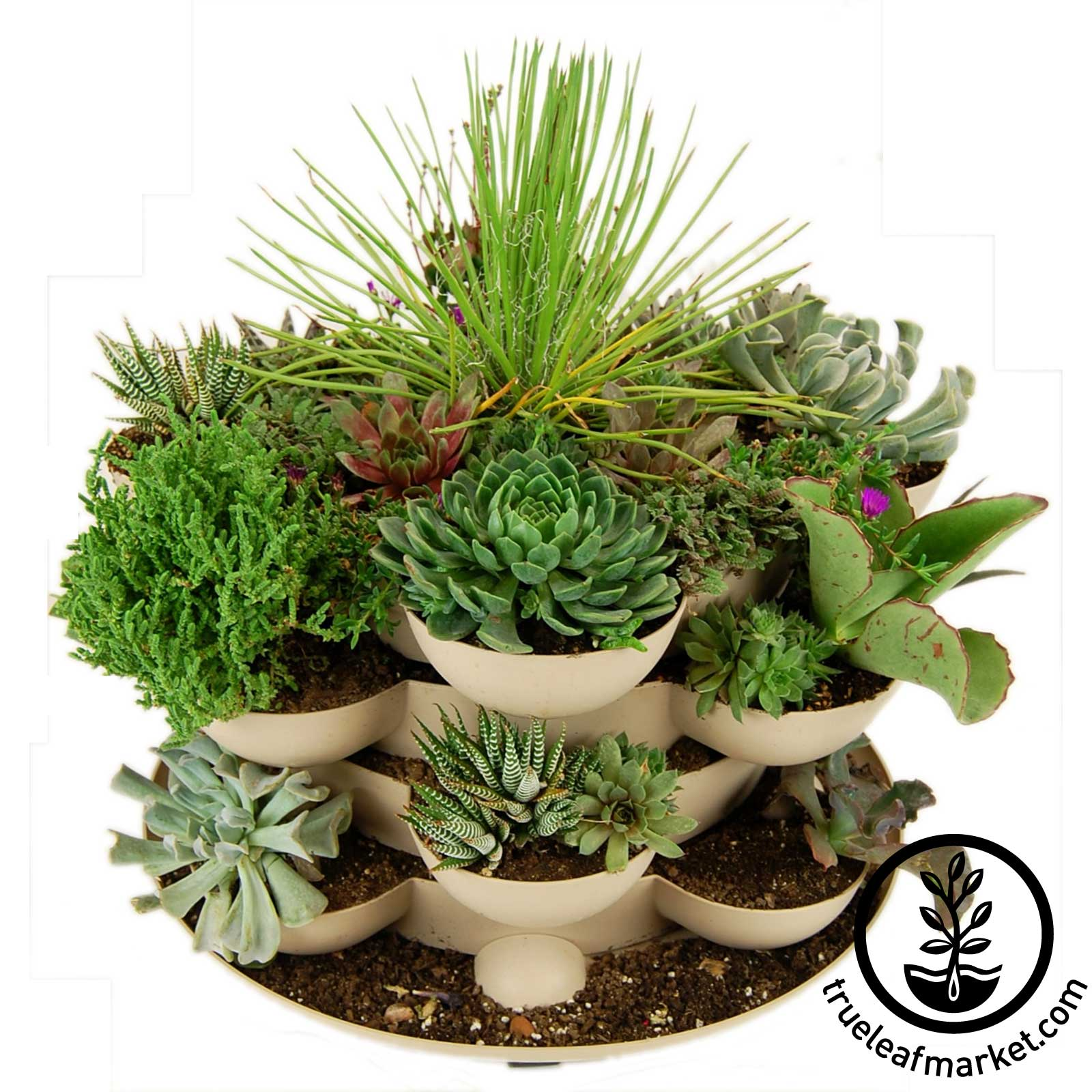 Stack and Grow - Stackable Garden Planter - TL-SG-TC