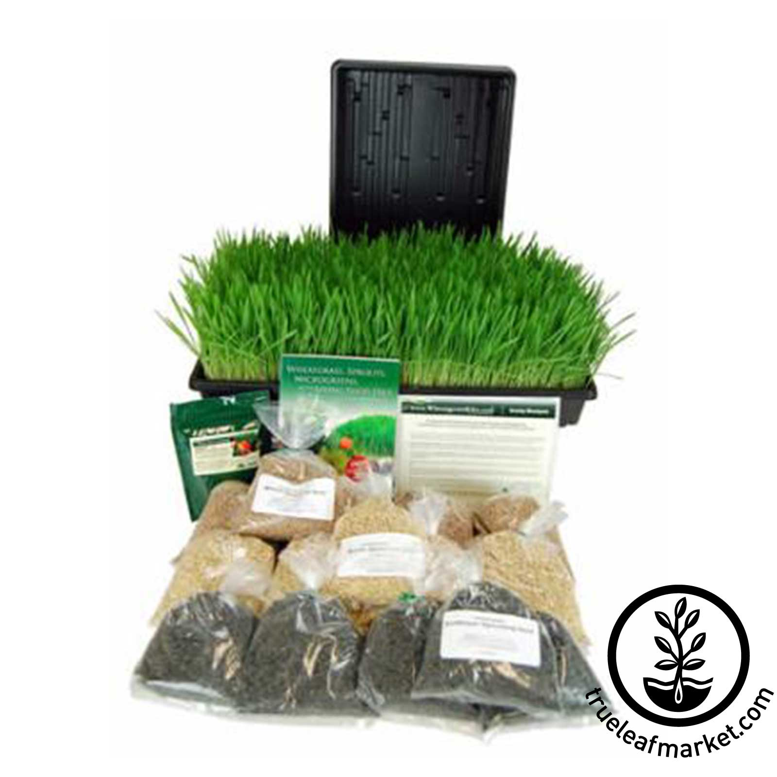 Deluxe Wheatgrass Barleygrass and Sunflower Greens Kit wheat grass, wheatgrass, barleygrass, sprouts, broccoli sprouts, wheat seed, ann wigmore, wheatgrass kit, grow, growing, juicing, wheat grass juice, wheat grass seed