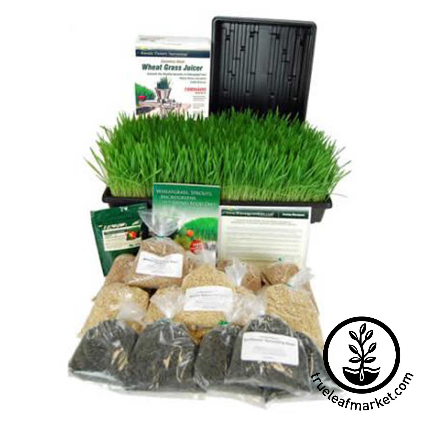 Deluxe Kit + Juicer (Wheatgrass Barleygrass and Sunflower) wheat grass, wheatgrass, wheatgrass juicers, wheat grass juicers, back to basics juicer, tornado juicer, manual juicer, barleygrass, sprouts, broccoli sprouts, wheat seed, ann wigmore, wheatgrass kit, grow, growing, juicing, wheat grass juice, wheat grass seed