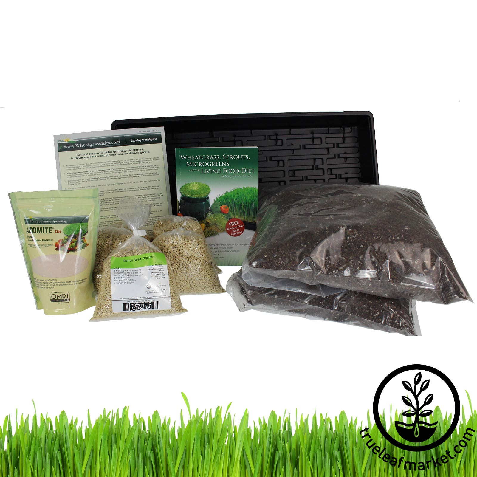 The Barleygrass Growing Kit - Grow Barley Grass barley grass, barley green, barley juice, barley seed