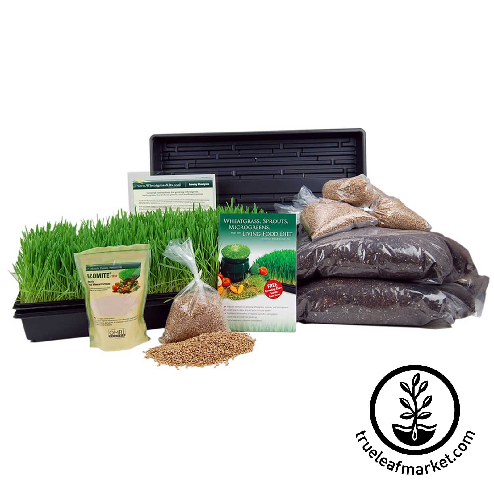 Wheatgrass Kit with Hurricane Juicer