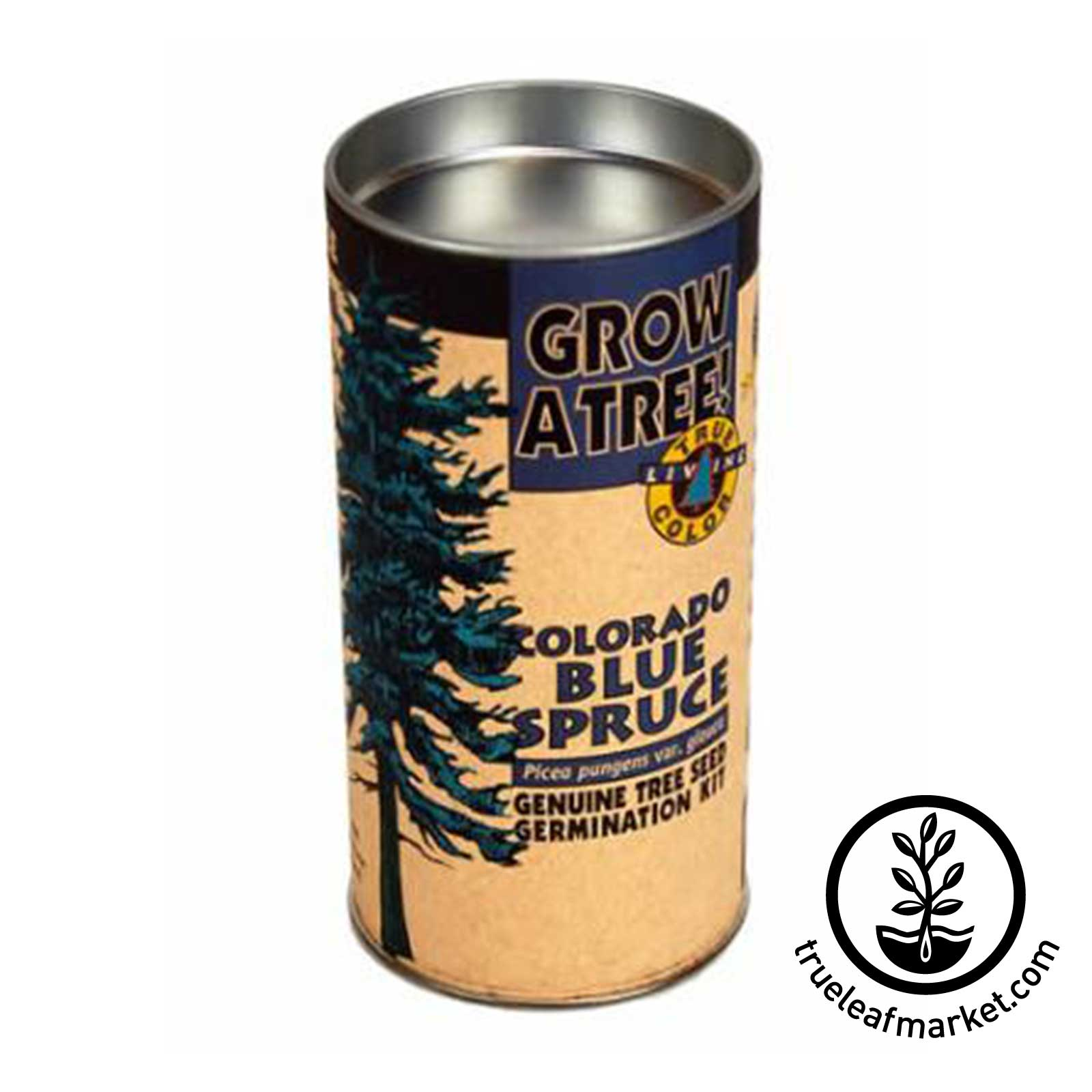 Colorado Blue Spruce Tree Kit  tree, kit, trees, colorado, blue, spruce, seed