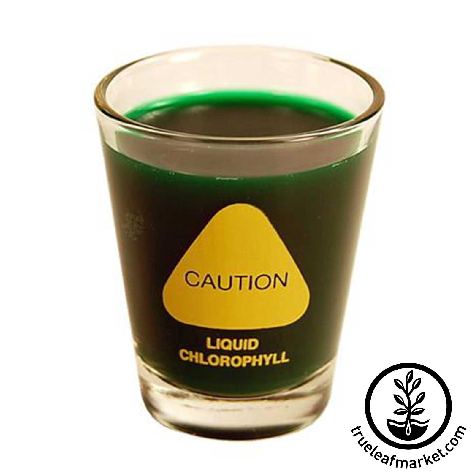 Wheatgrass Shot Glass - Front