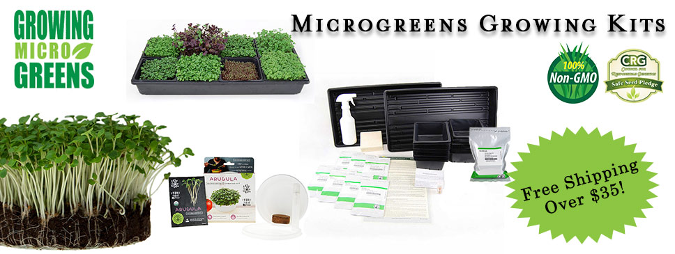 Easy and fun Microgreens Growing Kits at True Leaf Market