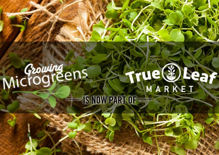 Growing Microgreens Hompage - Now at True Leaf Market!