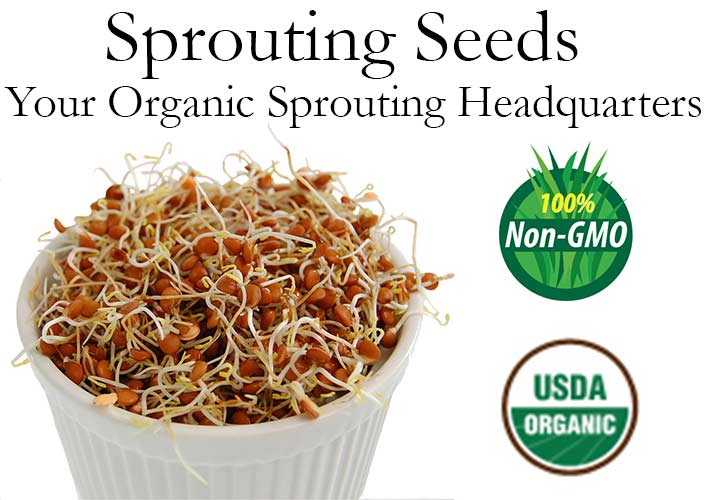 Handy Pantry Non-GMO Sprouting Seeds