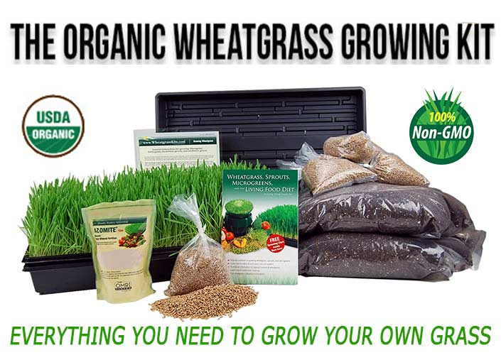 The Organic Wheatgrass Growing Kit
