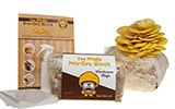 Mushroom Mojo kits, dried mushrooms, and more
