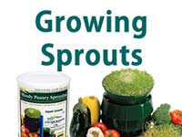 How to Sprout Seeds Starter Guide